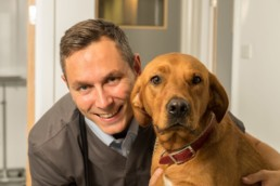 commercial-photographer-stratford-upon-avon-image-of-vet